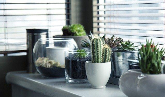 Conseils pour remplacer les fenêtres