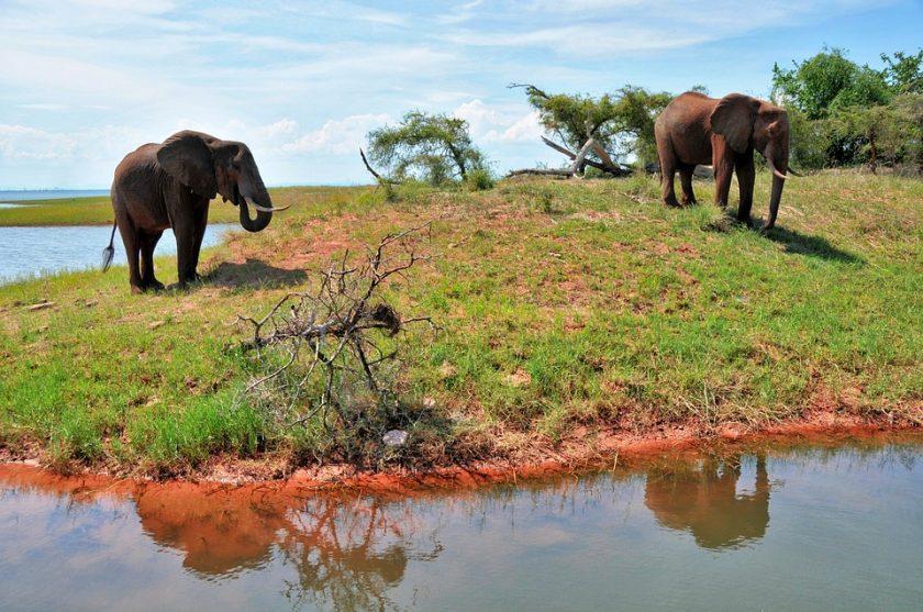 Un circuit sur mesure en Afrique à la découverte du Zimbabwe