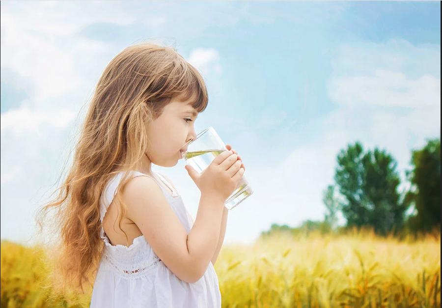 Quelle est la différence entre un adoucisseur d'eau avec sel et sans sel?